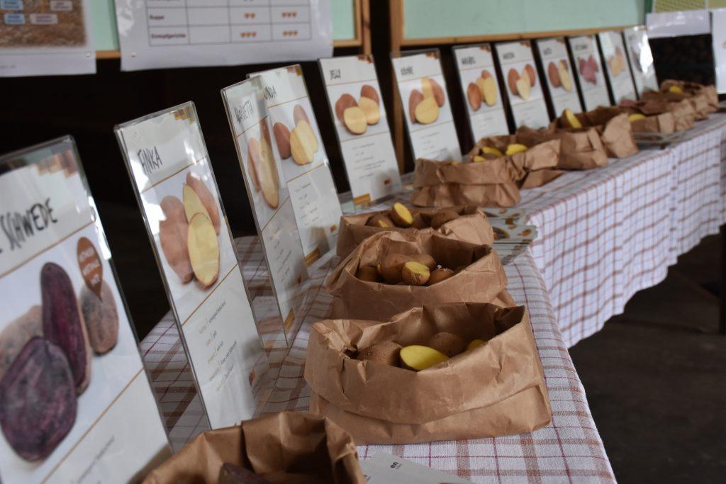 Bunte Kartoffelvielfalt in Altmühlfranken.